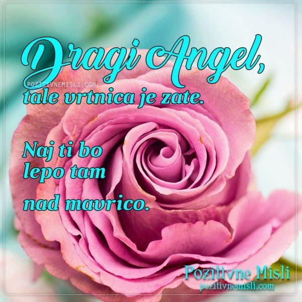 Dragi Angel ...