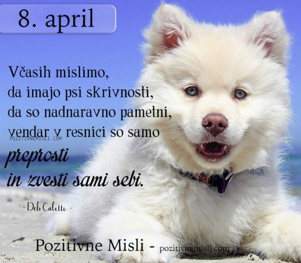 8. april - misel za današnji dan