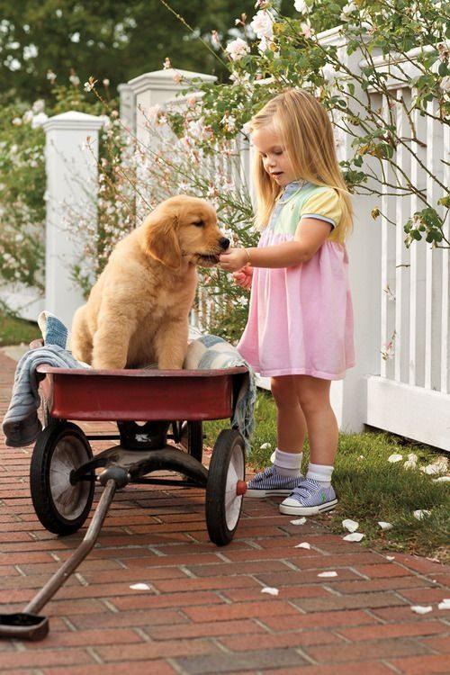 Misli o psu - otrok - pes