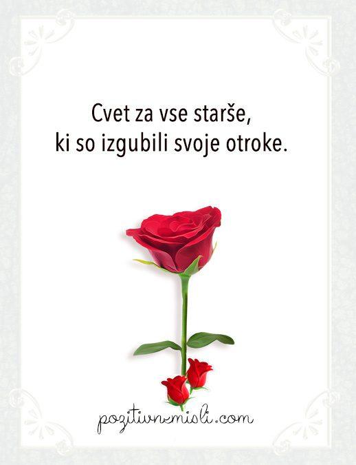 Cvet za vse starše, ki so izgubili svoje otroke.