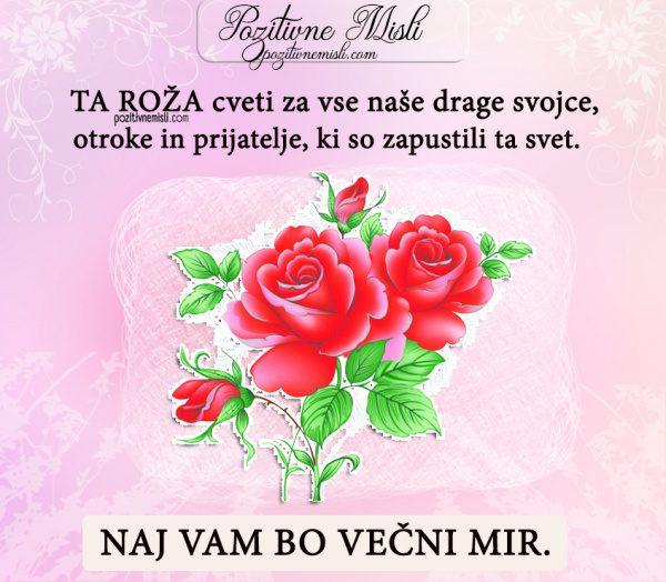 ŽALNE MISLI - Ta roža cveti za vse naše drage svojce