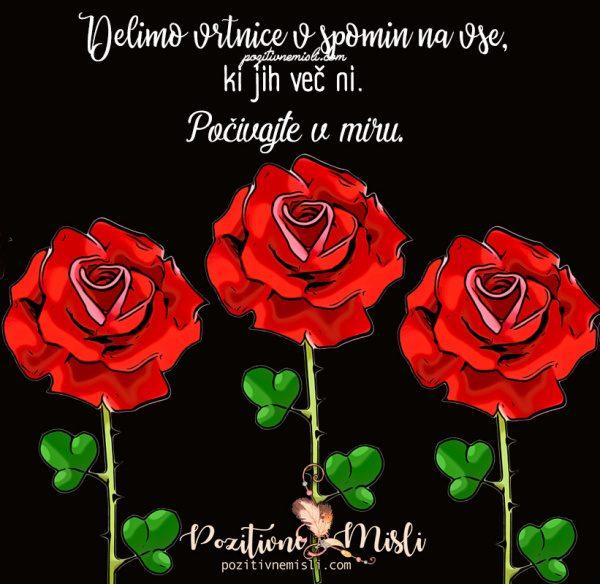 SPOMIN - vrtnica v spomin vsem umrlim