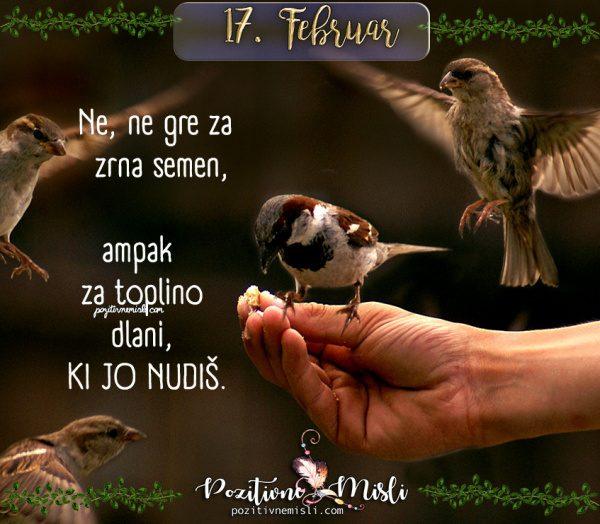 17. februar - Ne, ne gre za zrna semen