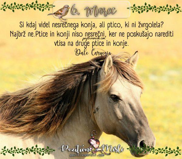6. MAREC - 365 lepih misli za vsak dan - Si kdaj videl nesrečnega konja
