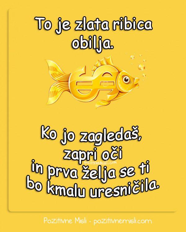 Za srečo - zlata ribica obilja
