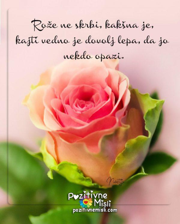 Rože ne skrbi