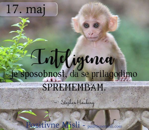 17. maj - 365 modrih misli