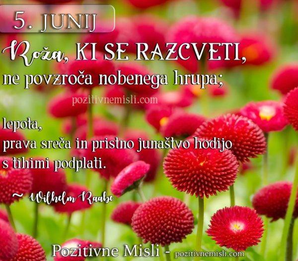 5. JUNIJ - Roža, ki se razcveti ...