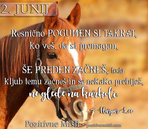 2. junij -  MISLI O POGUMU - 365 MISLI