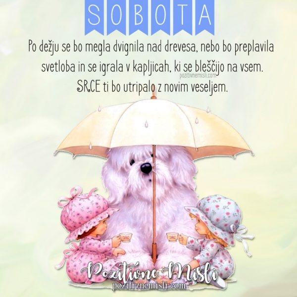 SOBOTA -  misli za deževen dan-