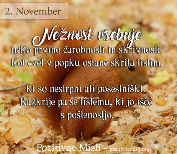 2. november - Nežnost vsebuje neko prvino