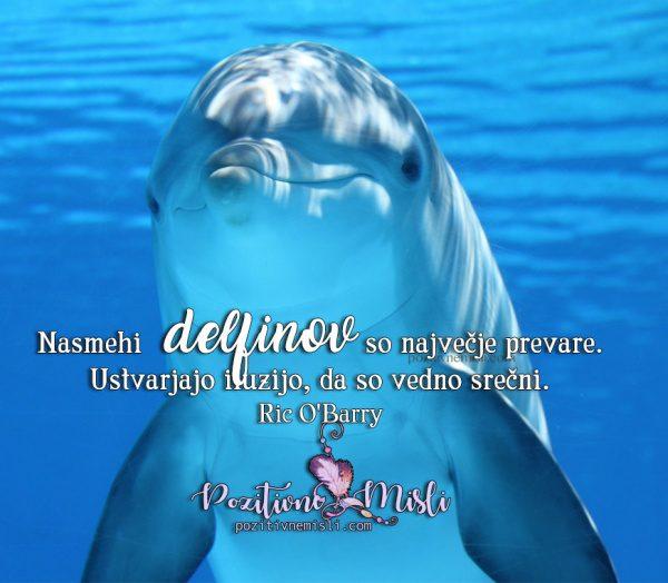 MISLI O DELFINIH - Nasmehi delfinov