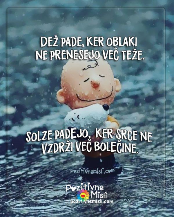 Misli o žalosti  - Misli o bolečini - Dež pade