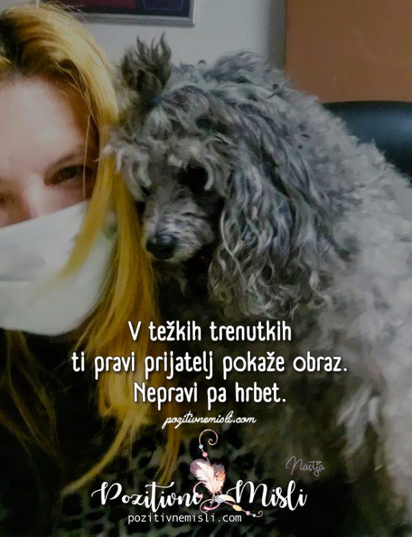 Pes terapevt - V težkih trenutkih življenja