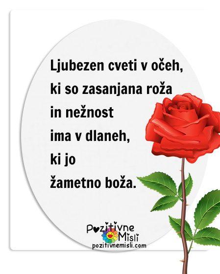 Ljubezenski verzi - Ljubezen cveti v očeh