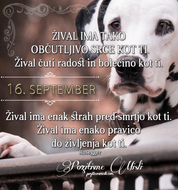 16. september - 365 misli koledar lepih misli o življenju