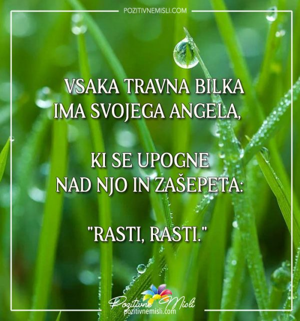 Vsaka travna BILKA ima svojega angela