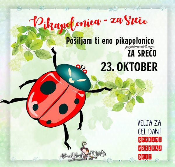 23. oktober - 365 srečnih dni - Pikapolonica za srečo