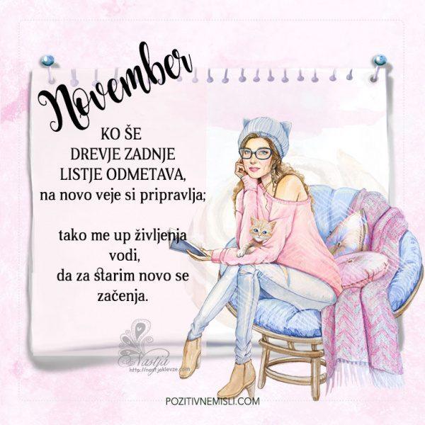 Pozitivčica - Letni koledar misli - november