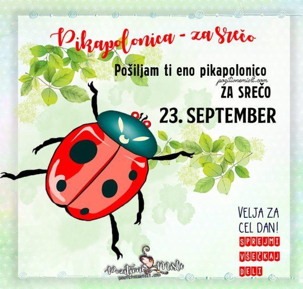 23. september - 365 srečnih dni - Pikapolonica za srečo