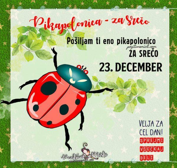 23. december - 365 srečnih dni - Pikapolonica za srečo