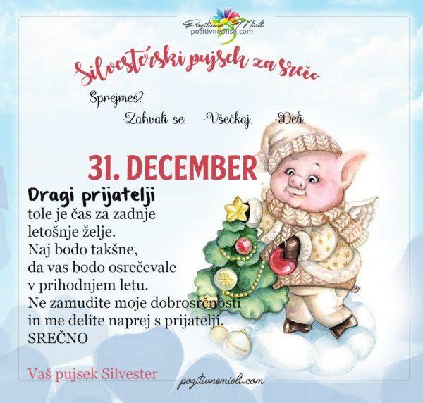 31. december - 365 srečnih dni - pujsek Silvester