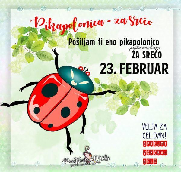 23. februar - 365 srečnih dni - Pikapolonica za srečo