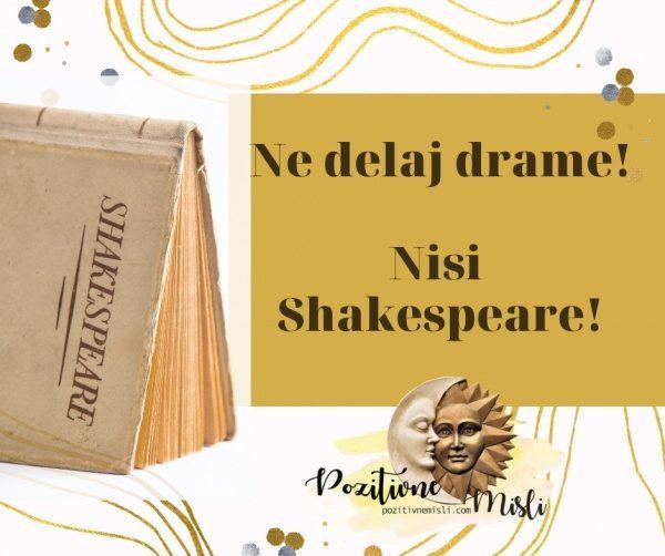 Ne delaj drame! Nisi Shakespeare!