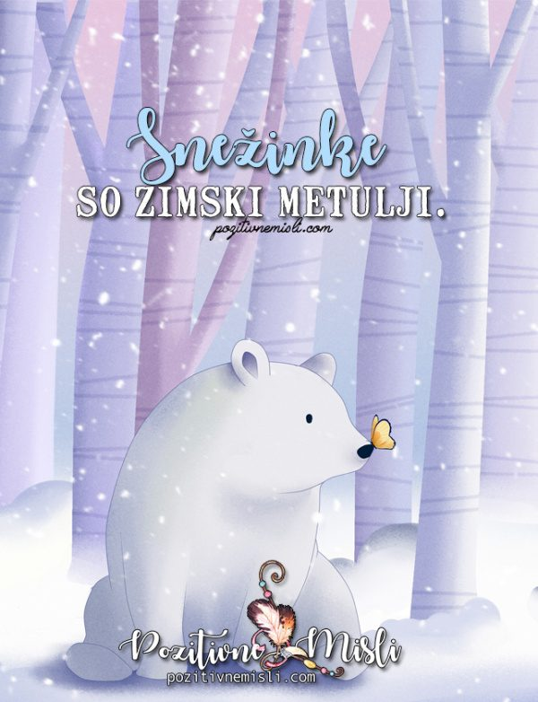 Najlepše misli o metuljih in snežinkah - Snežinke so