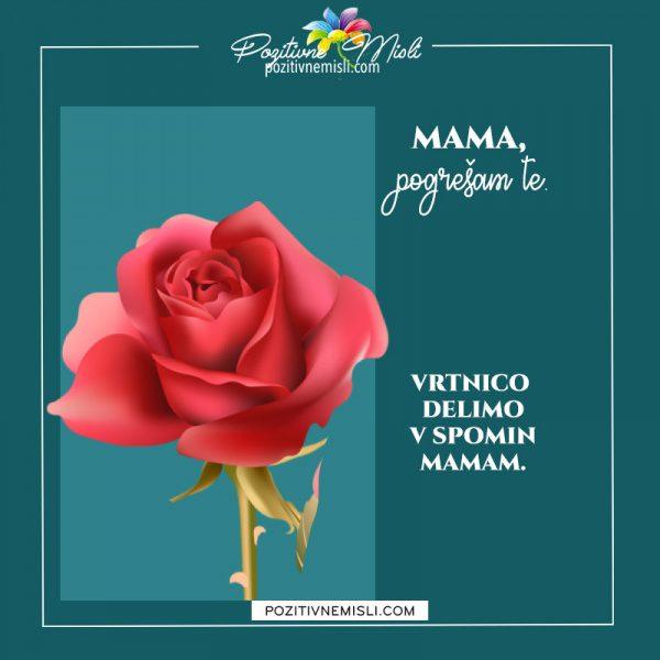 MAMA - v spomin nate