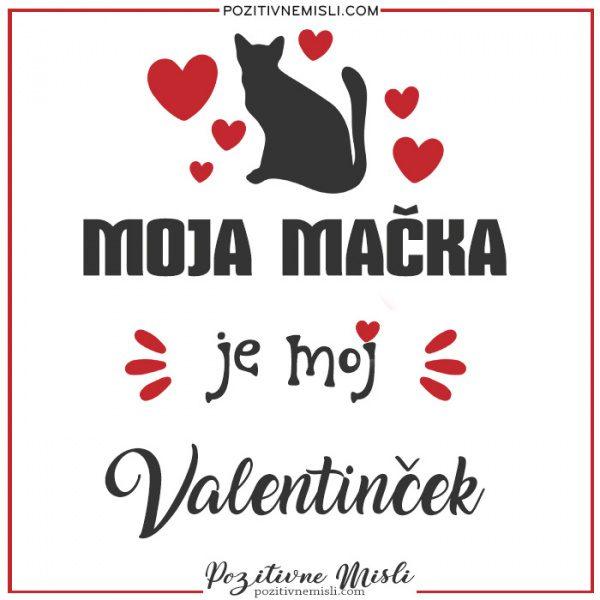 Valentinovo - Moj maček je moj valentinček