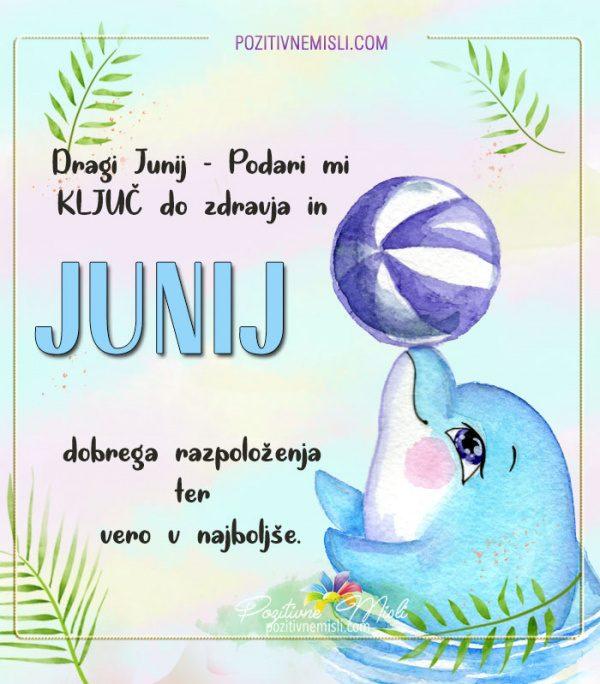 JUNIJ - Dragi junij prosim podari mi ključ
