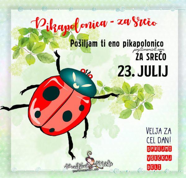 23. julij - 365 srečnih dni - Pikapolonica za srečo