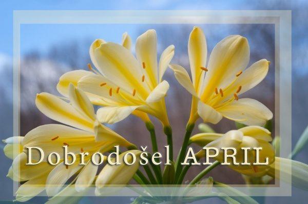 April dobrodošel - misli, verzi, citati