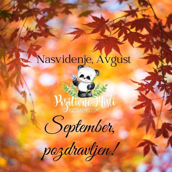Nasvidenje avgust -  september pozdravljen
