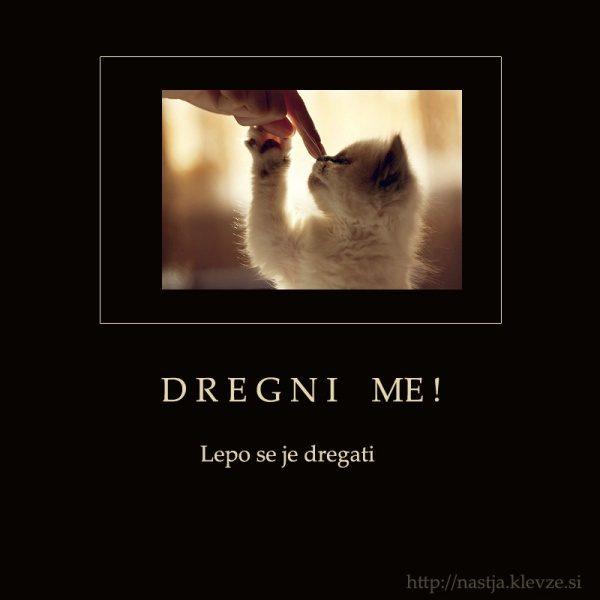 Dregni me - facebook status :)