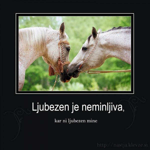 Ljubezen - facebook like