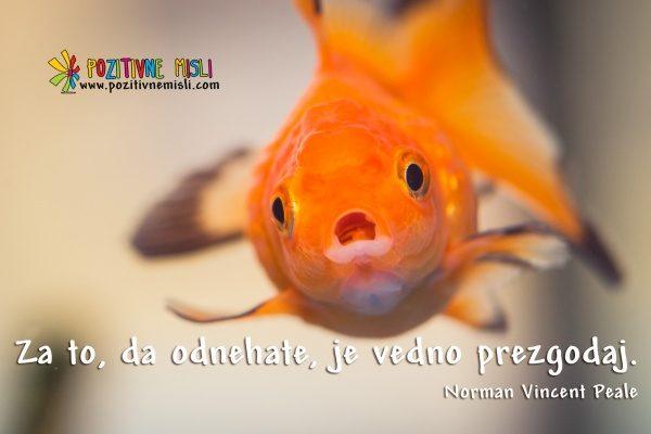 Ne odnehajte - Norman Vincent Peale