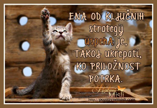 Ena od ključnih strategij uspeha je, TAKOJ ukrepati