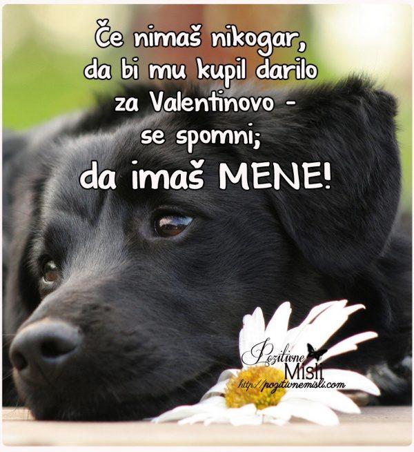 Če nimaš nikogar za valentinovo - verzi za valentinovo
