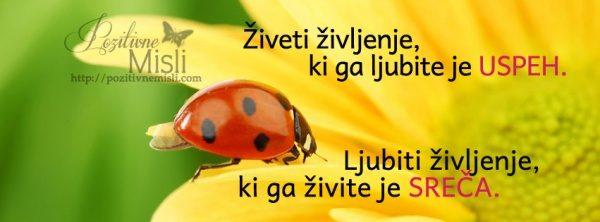 Ljubiti življenje, ki ga živite -