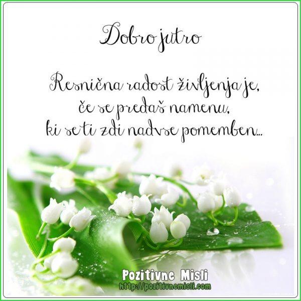 Resnična radost življenja je, če se predaš namenu, ki se ti zdi nadvse pomemben