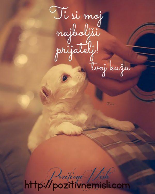 Ti si moj najboljši prijatelj ...< tvoj kuža