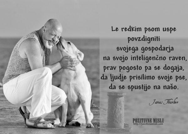 Pes in gospodar - modre misli o živalih