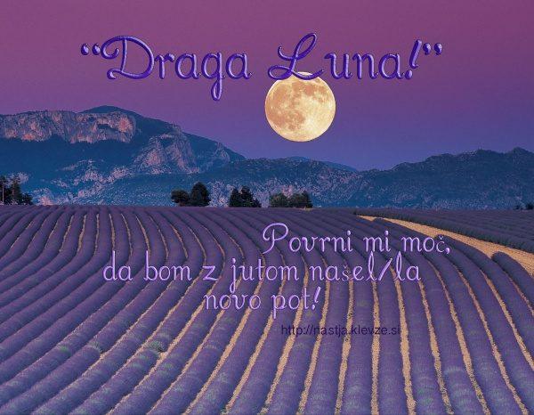 MISLI ZA LAHKO NOČ - Draga Luna