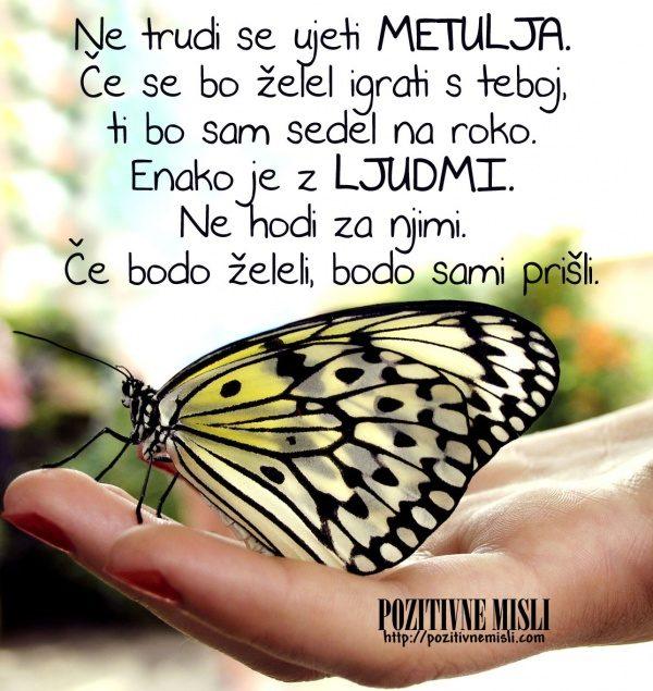 Ne trudi se ujeti metulja. Če se bo želel igrati s teboj,