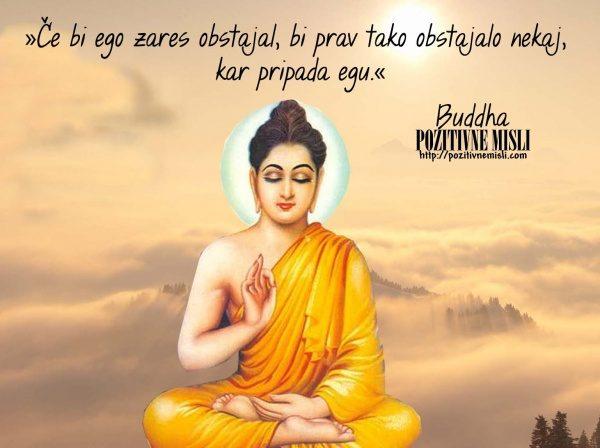 BUDA -  Buddha - Ego - citati 1