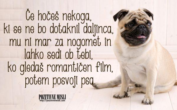 Posvoji psa