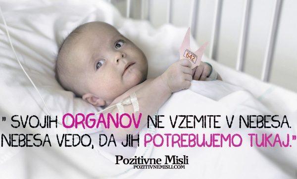 Transplantancija - presaditev organov